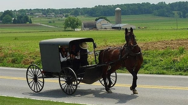 3 Accessible Lodging Accommodations in the Heart of Ohio's Amish Country