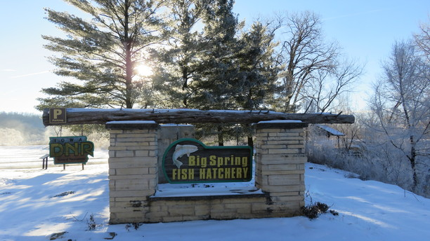 Experience Winter's Magic at Big Spring Fish Hatchery