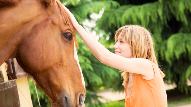 Owning a Horse Doesn't Need to Be Expensive
