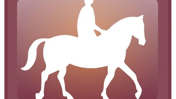 An App Against Accidents, for Humans and Horses